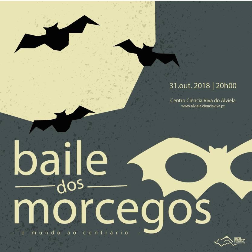 BAILE DOS MORCEGOS 2018 | CENTRO DE CIÊNCIA VIVA DO ALVIELA