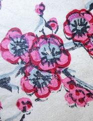 SE| Sakura- A Flor Princesa| Sábados em Família