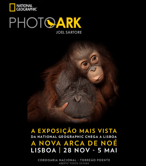PHOTO ARK – EXPOSIÇÃO LISBOA | CORDOARIA NACIONAL