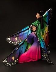 Butterfly Lovers – Liang Zhu